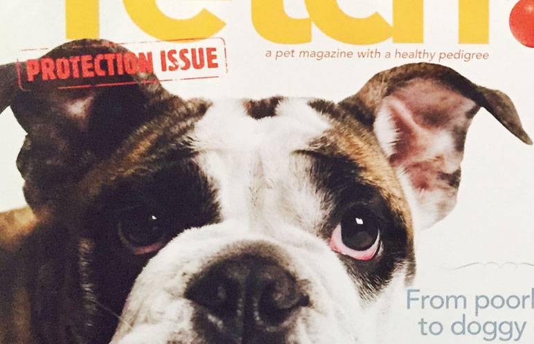 Pet Plan Magazine Cover